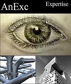 logo AnExc.jpg