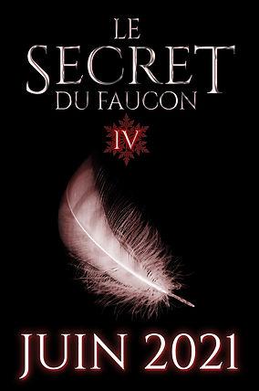 Le Secret du Faucon Tome 4
