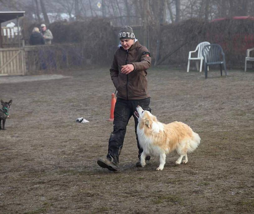 Elias mit Bobby bei der Arbeit