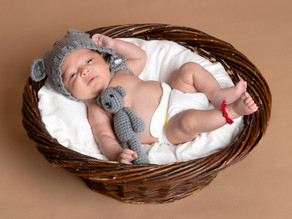 Unique Newborn Baby Photography Only $249