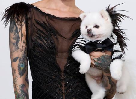 model joie.damon With Canine Model Milk Pom Star walks in the Anthony Rubio Women's Wear & Canine