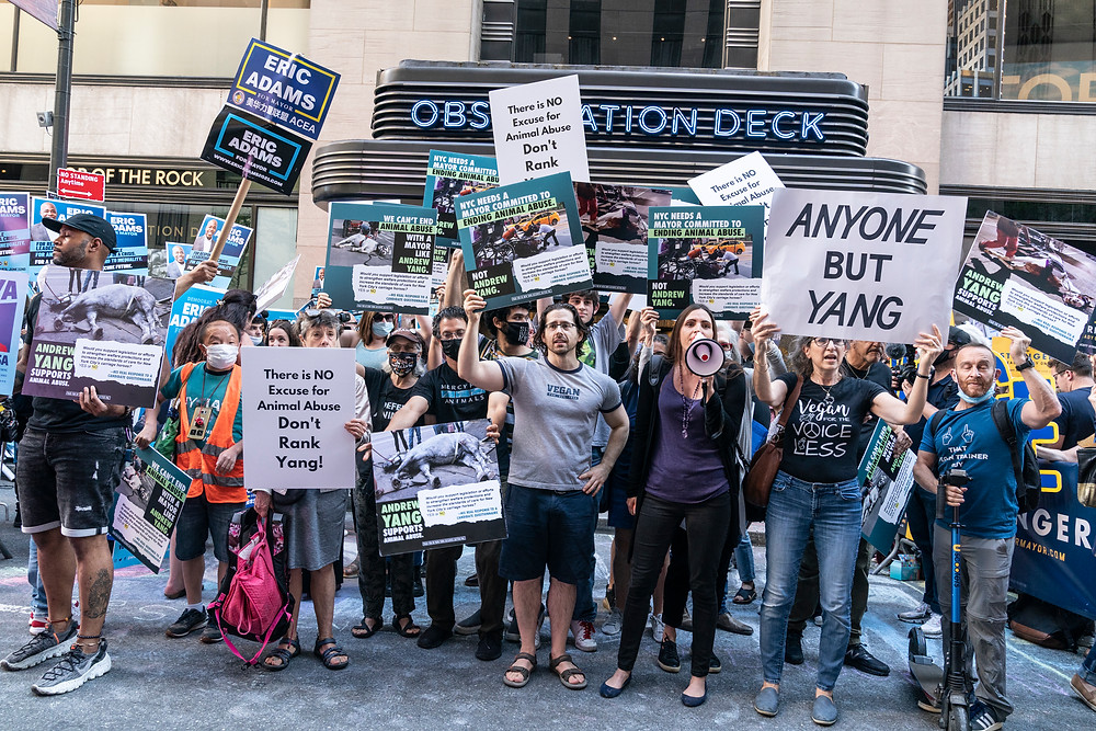 New York, NY - June 16, 2021: Animal rights advocates staged protest against mayoral candidate Andrew Yang before debate at NBC Studios at Rockefeller Center Photo Credit: Devin Kasparian / TALS Studio