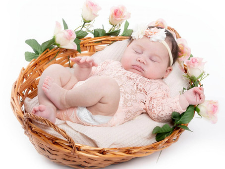 Newborn Photoshoot Only $249