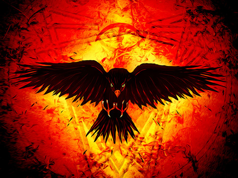 Cinder Crow (1 of 1).jpg