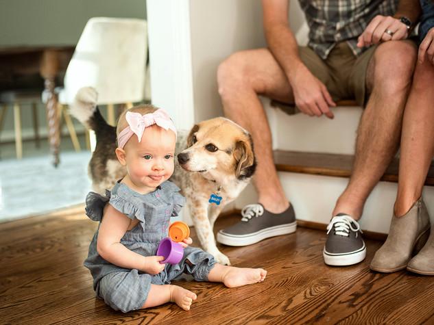 BabyDogStairs.jpg