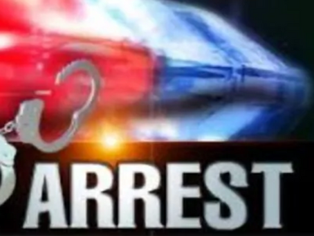 ARRESTED: Driver who led South Congaree police on pursuit in custody