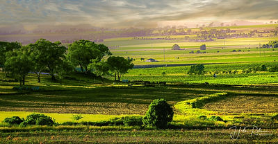 Elphinstone ValleyResize.jpg