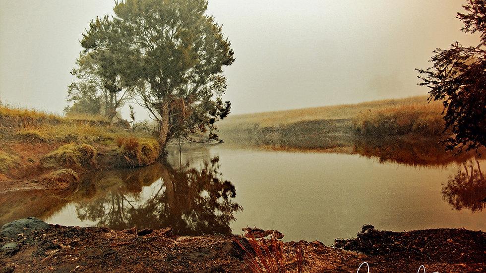 Morning At The Dam