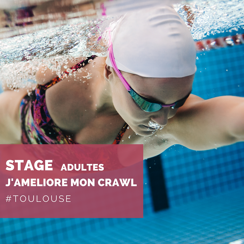 STAGE ADULTES - TOULOUSE - PISCINE