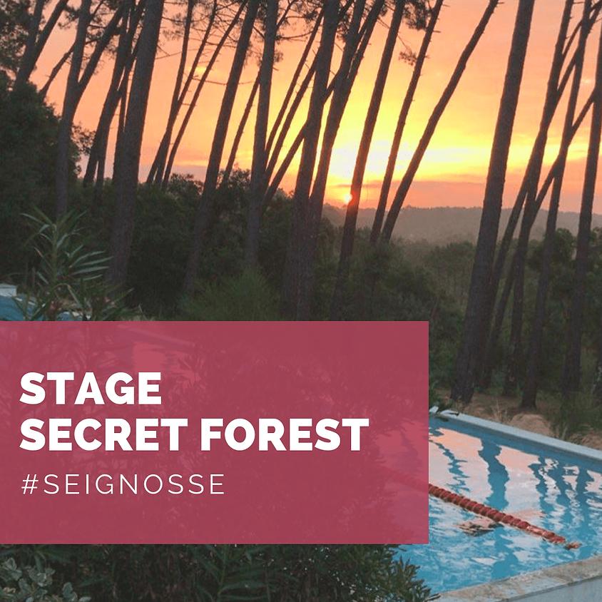 STAGE ADULTES - SECRET FOREST - PISCINE