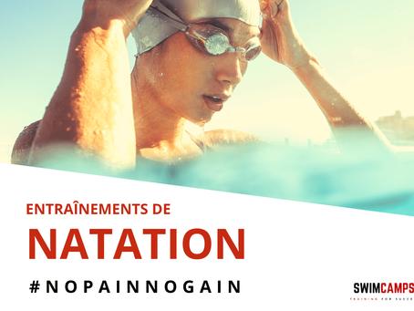 Séances d'entraînement pour les nageurs qui souhaitent se préparer à des épreuves de longue distance