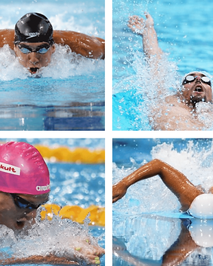 stage de natation 4 nages