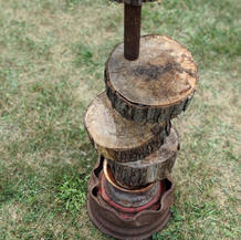 Try To Regrow A Tree With A Line of Pipe