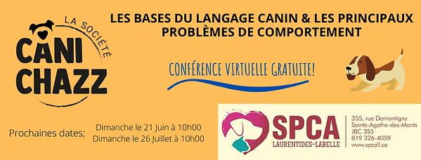Les_bases_du_langage_canin_et_les_princi