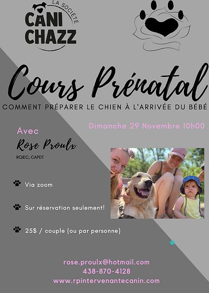 Cours prénatal 29.11.2020.png