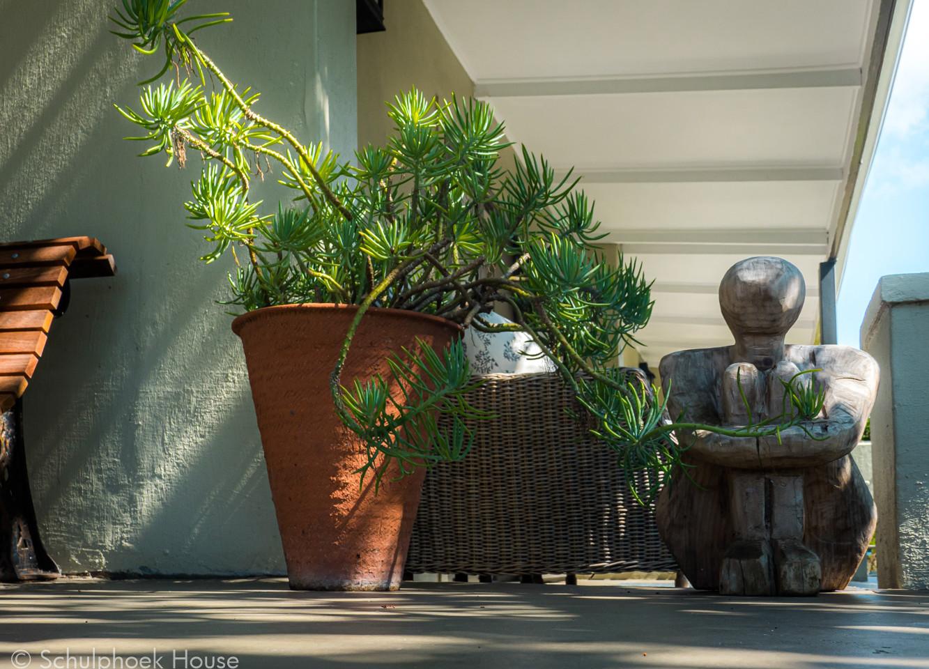 Luxury Garden King