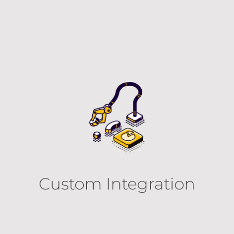 Custom Integration