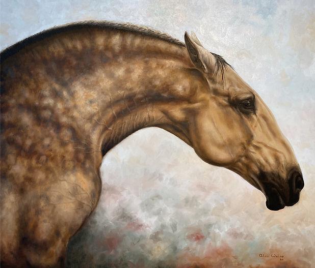 Equus Caballus.jpg