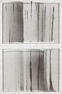 Veil Series D427.jpg
