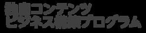 独自コンテンツビジネス構築プログラム_03.png