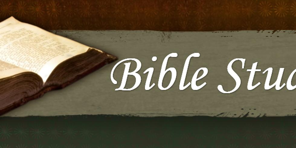 """""""Origins"""" Bible Study led by Pastor Duke"""