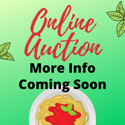Online Auction Coming Soon.png
