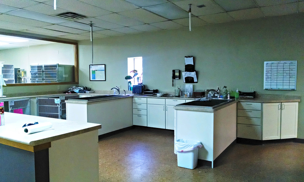 Wellness Treatment Area