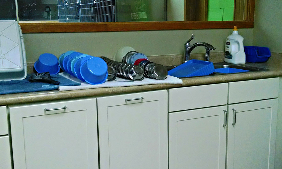 Dishes & Prep Areas