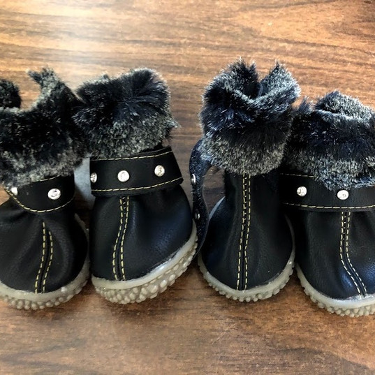 Dog Booties, Collars, Clothes, Etc