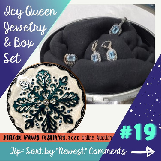 #19 Icy Queen Jewelry & Box Set