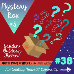 #38 Mystery Box 3