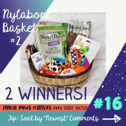 #16 Nylabone Basket #2
