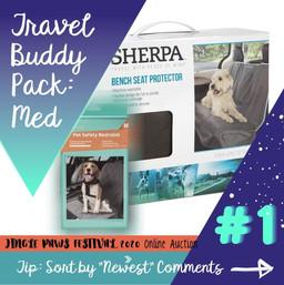 #1 Travel Buddy Pack: Med