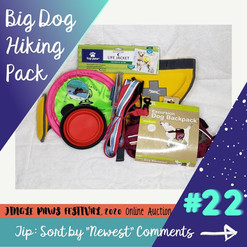 #22 Big Dog Hiking Basket