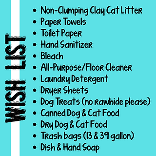 Non-Clumping Clay Cat Litter_ Paper Towels Toilet Paper Hand Sanitizer Bleach All-PurposeF
