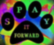 spayitforward_edited.jpg