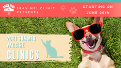 Spay Me! Summer Vaccine Clinic