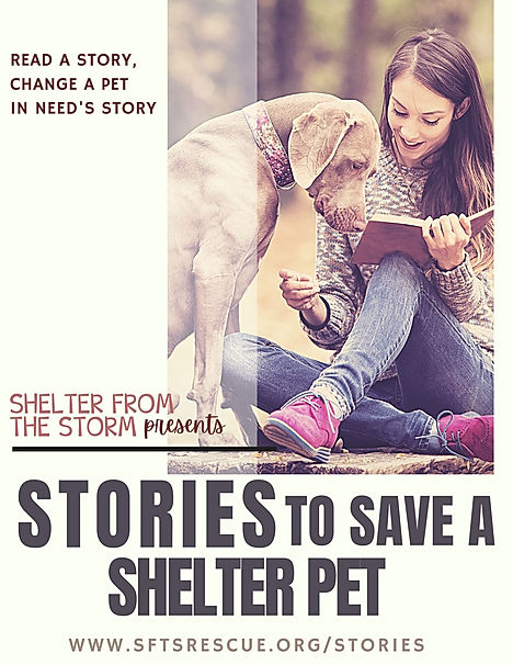 Stories to Save a Shelter Pet (1).jpg