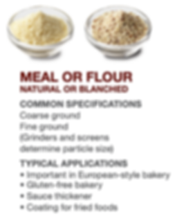Meal and Flour Explainer.png