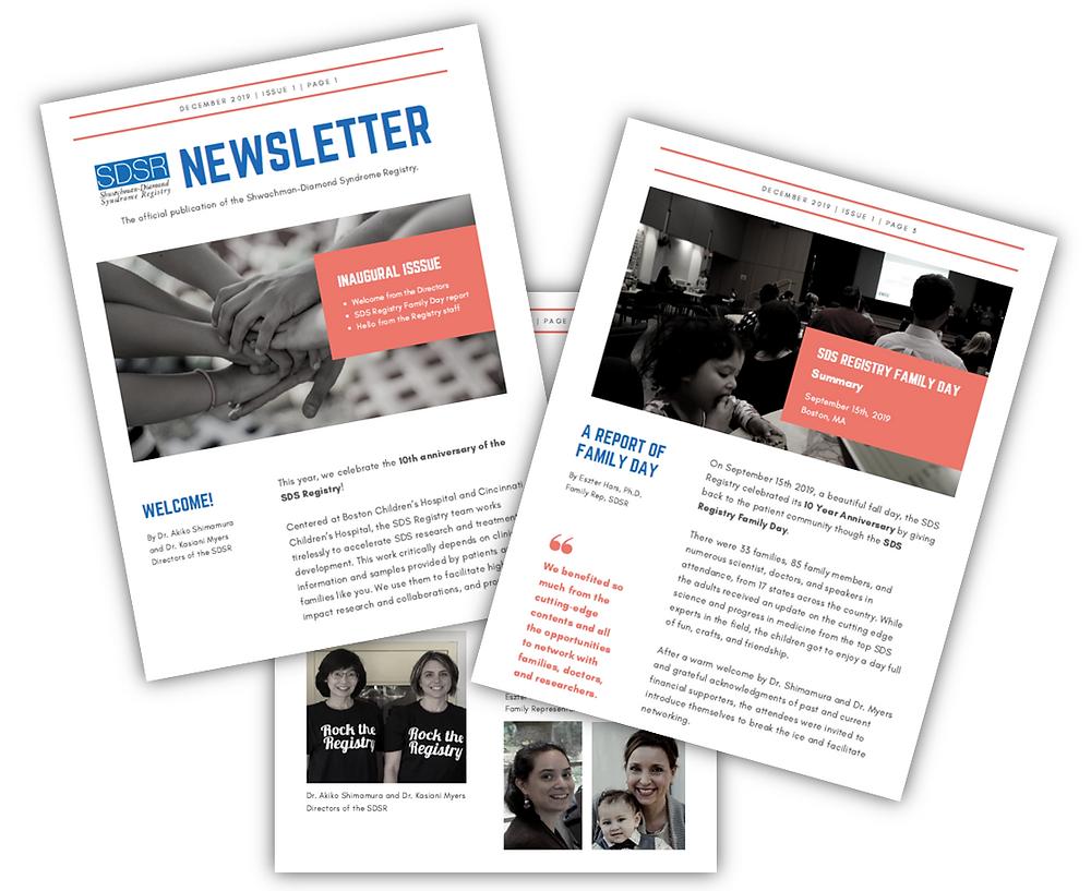 SDS registry newsletter icon