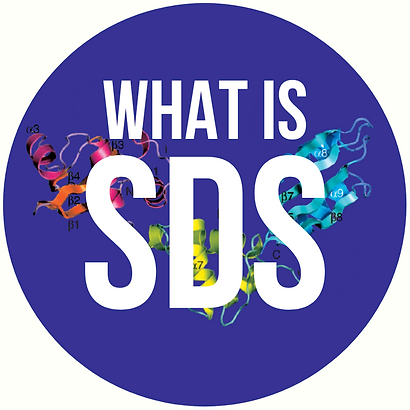 what is SDS icon.png