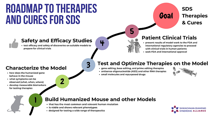 SDS Therapies and Cures Roadmap.png