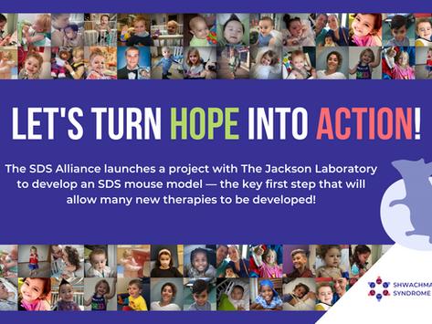 L'alliance SDS lance un projet de modèle de souris avec le laboratoire Jackson.
