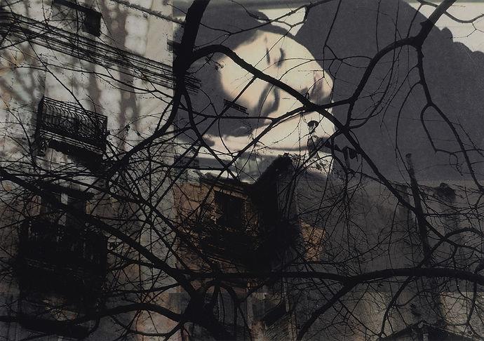 W1 Collage Somni.jpg