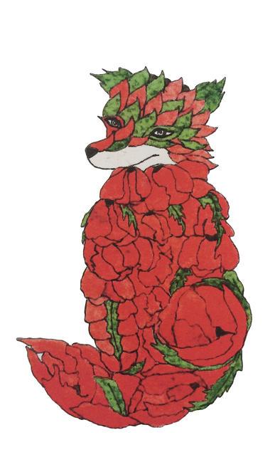 fox poppy tom.jpg