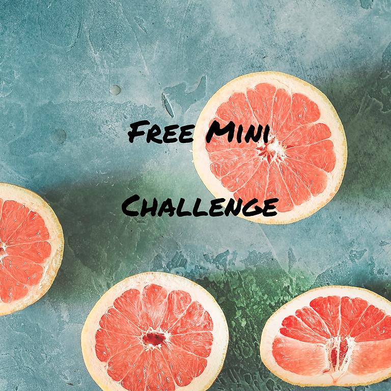 7 Day Sugar Free Challenge (1)