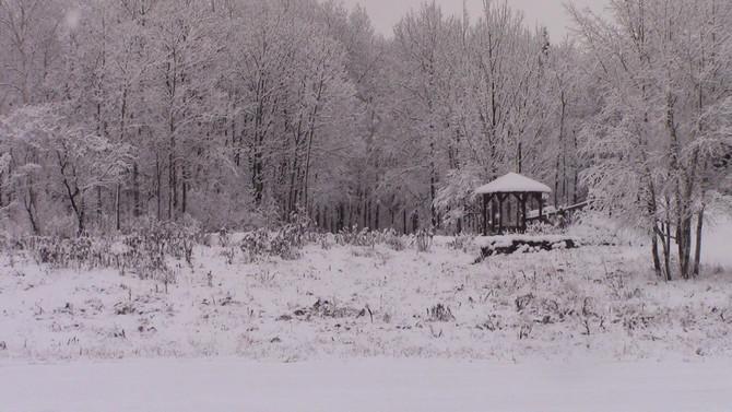 November Snow...
