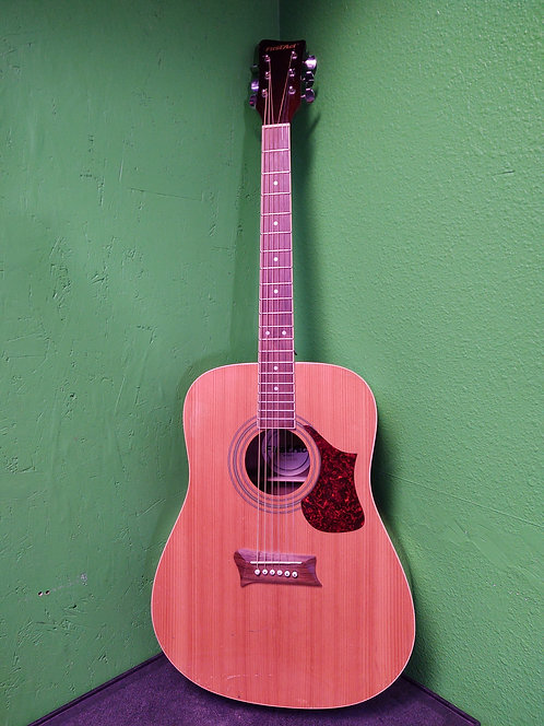First Act MG412 6 String Acoustic Guitar - Cedar City