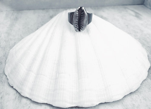 Ring Shell Style