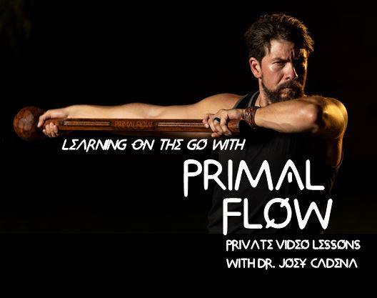 Learning On the Go with Primal Flow